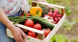 Рацион органического питания